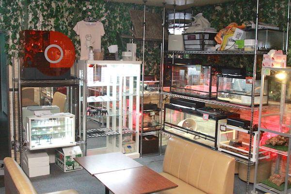 レボルの店内画像