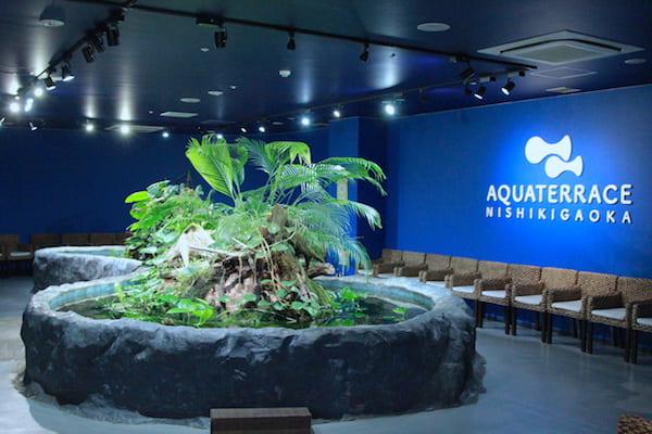アクアテラス錦ヶ丘のタッチプールの画像