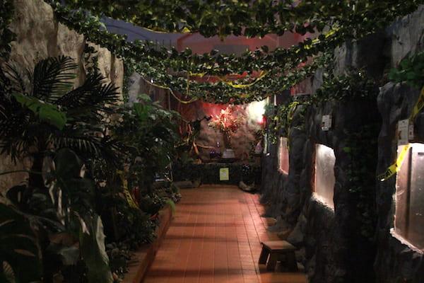 アクアテラス錦ヶ丘のジャングルゾーンの画像