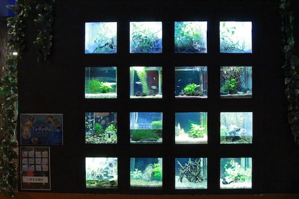 アクアテラス錦ヶ丘の16個の水槽の画像